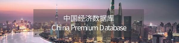 中国经济数据库
